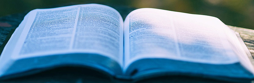 Valkuilen van ondernemen: de vloek van kennis, ofwel, door te veel weten is het lastiger om je klanten te helpen
